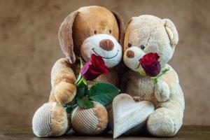 ositos de peluche con rosas